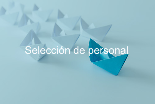 Selección02